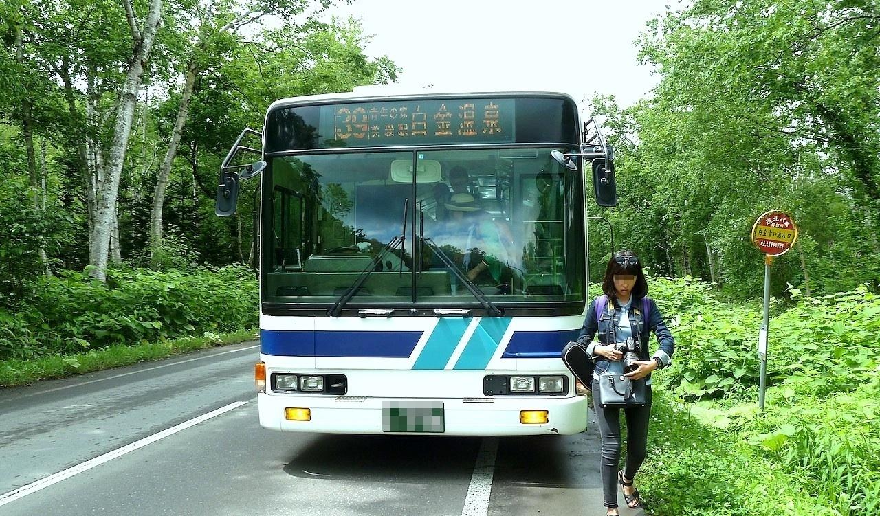 北海道の美瑛の観光旅行 青い池への路線バス
