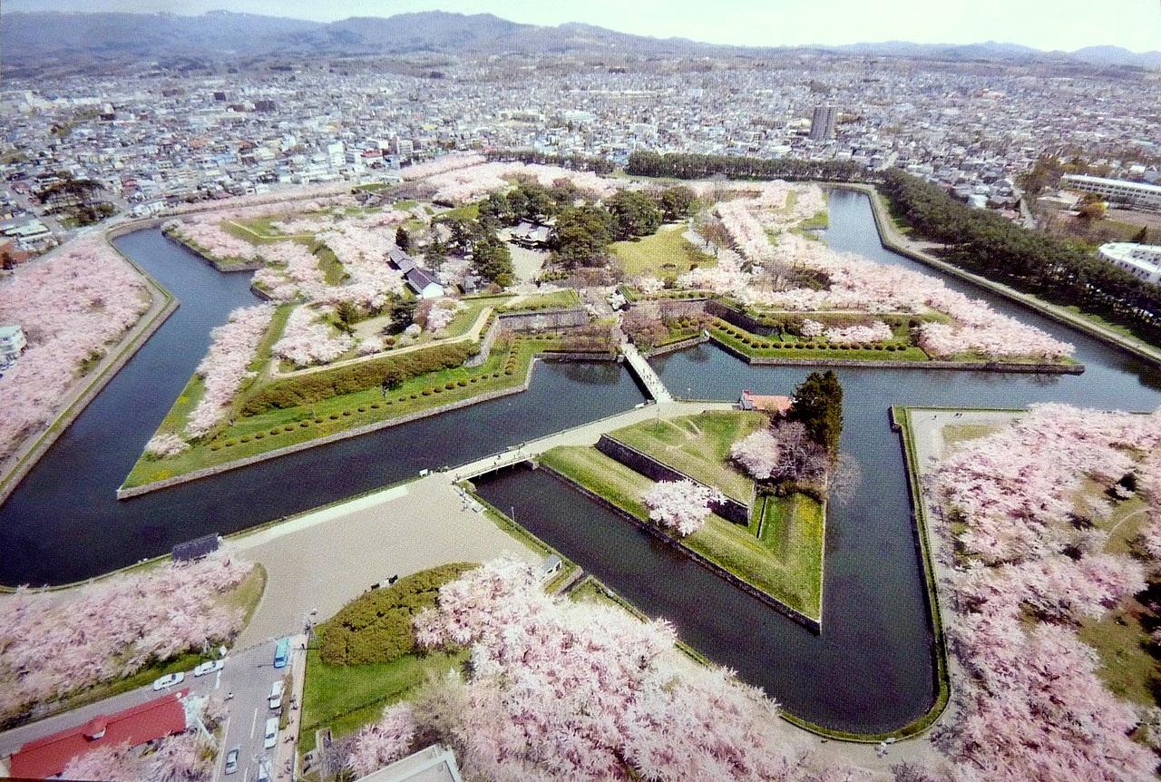 北海道の函館の観光旅行 五稜郭タワーからの桜の眺め
