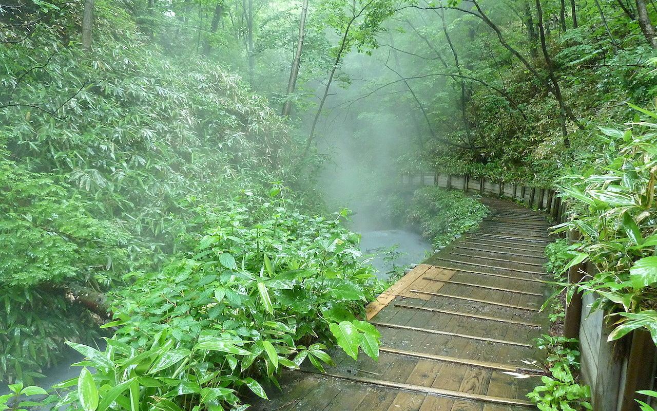 北海道の登別温泉の観光旅行 大湯沼川天然足湯への原始林