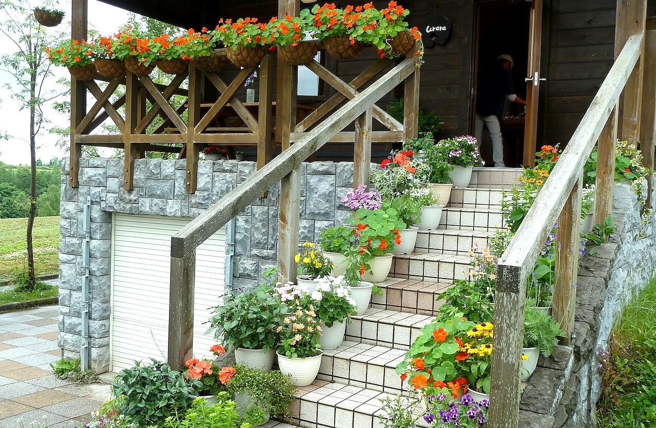 北海道の美瑛の観光旅行 パッチワークの路の北西の丘展望公園